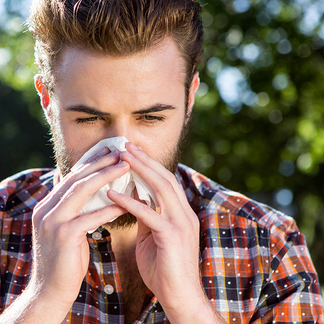 reducing the impact of a pollen allergy