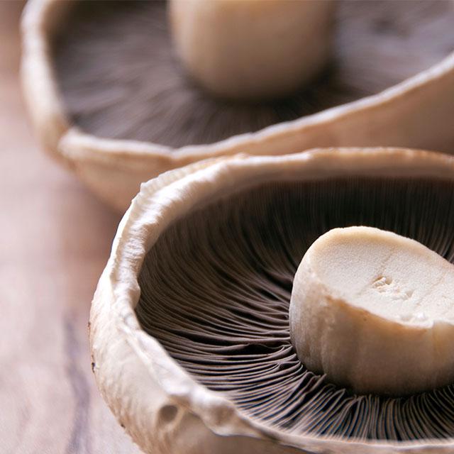 meatless monday mushroom recipes