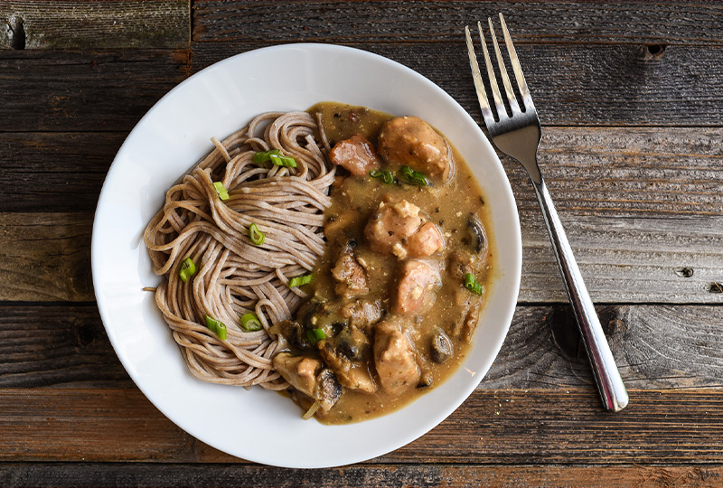 Chicken stroganoff and noodles in a white bowl