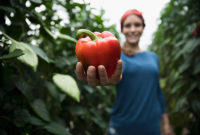 A woman stands on a farm holding a big red pepper toward the camera.