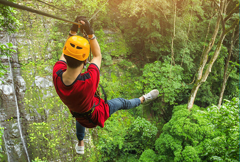 Man zip lining in a tropical forest.